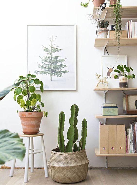 tendencias de decoracion